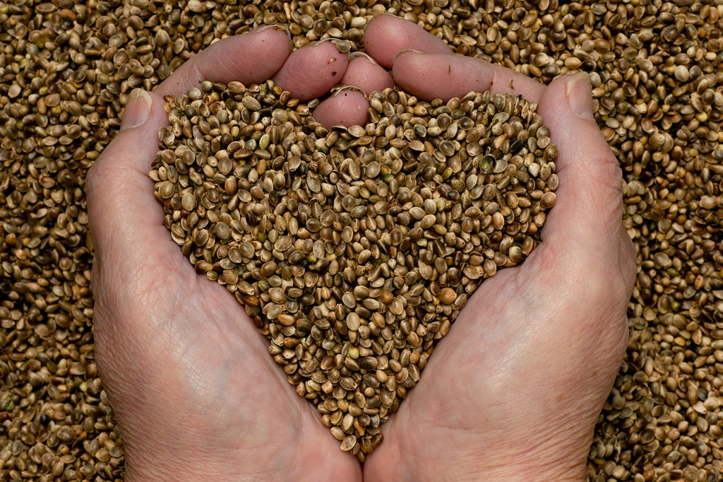 thyme-for-hemp-seeds-hands3